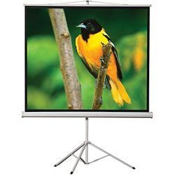 60 x 60 Portable Tripod Projection Screen